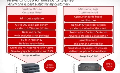 Avaya Ip Office Overview